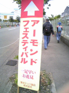アーモンドフェスティバル.JPG